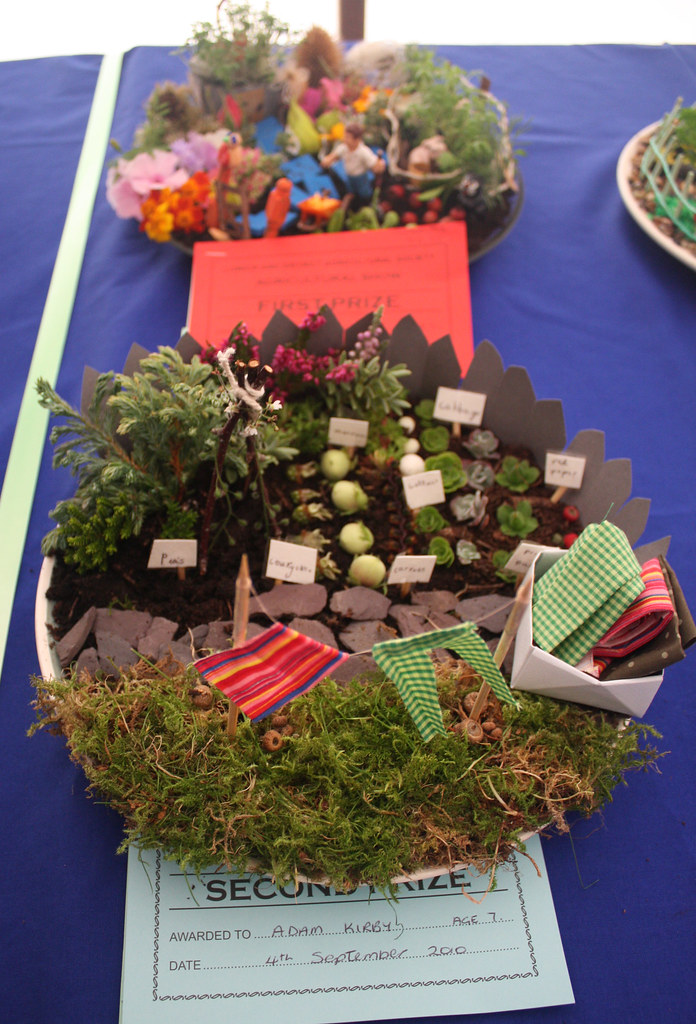 Miniature Garden On A Plate An Entry In One Of The