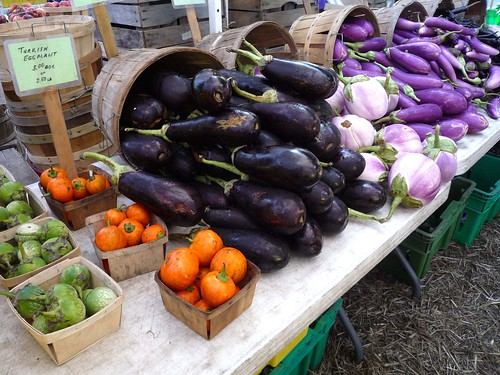 Assorted eggplants from Green Acres | by Lydia_M1