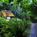kilfane-cottage