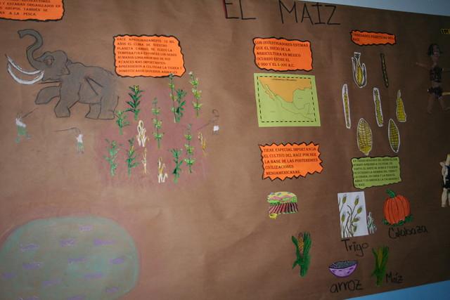 Peri dico mural d a nacional del ma z 7 flickr photo for Estructura del periodico mural