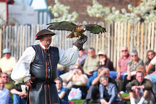 Robby Sinkler and Red Tailed Hawk 2010 AZ Ren Fest | by gbrummett