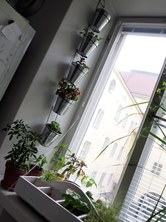 Vertical garden using IKEA's KROKEN cutlery stands | by mannewaar
