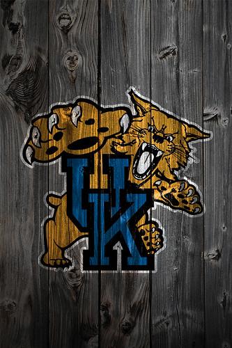 gallery for kentucky wildcats wallpaper logo