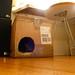 Designer catboxes