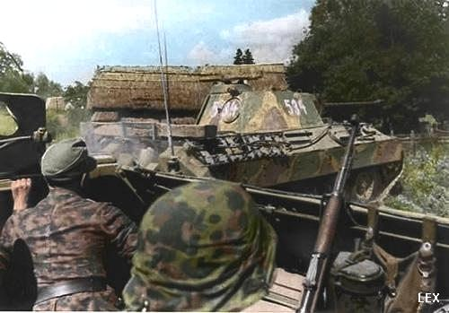 Wiking Panzers Panthers Of The 5 Ss Panzer Division