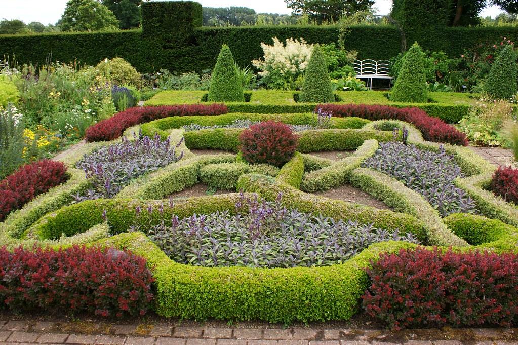 Knot garden od buxus and berberis karl gercens flickr for Knot garden design ideas
