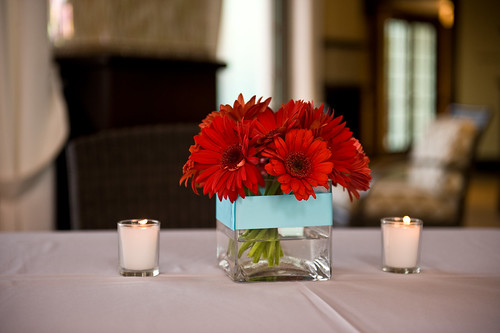 Red gerbera centerpieces with teal ribbon
