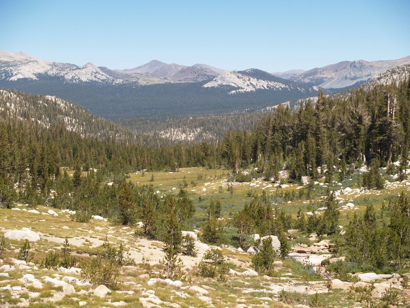 One of several sloping meadows in Rafferty Canyon