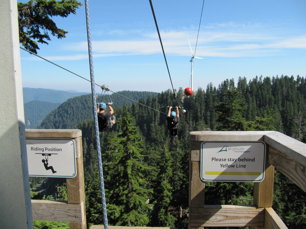 By Iwona Kellie Zipline On Grouse Mountain North Vancouver