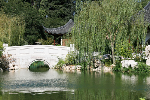 Chinese Bridge and Willow at the Huntington | by Randy Son Of Robert