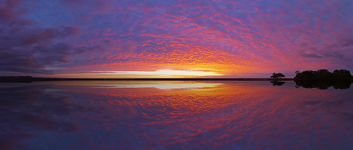 Nudgee Pan | by greenplasticdave