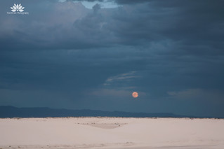 Moon Rise over the Dunes | by Pavithra's Photography