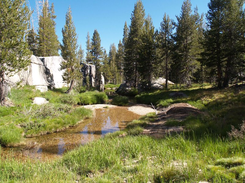 Hiking along Rafferty Creek