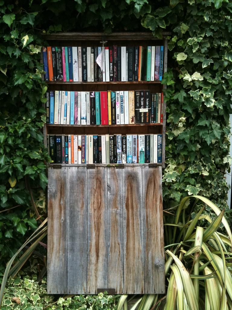 Books Lovers Dream Bookshelf