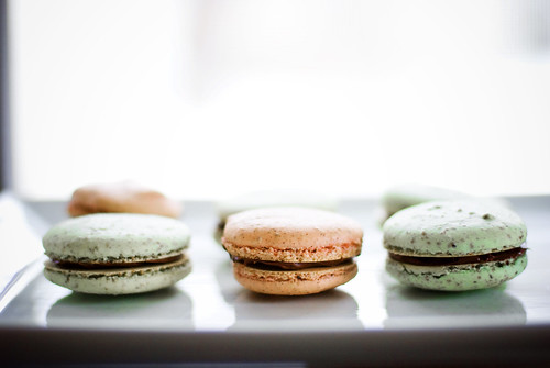 Macarons | by pricklypearbloom