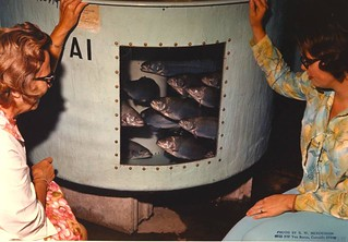 Couple of women observing rainbow trout | by OSU Special Collections & Archives : Commons