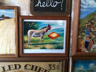 Rooster Zebra Contemplating Grilled-Cheese Sandwhich | by Ross