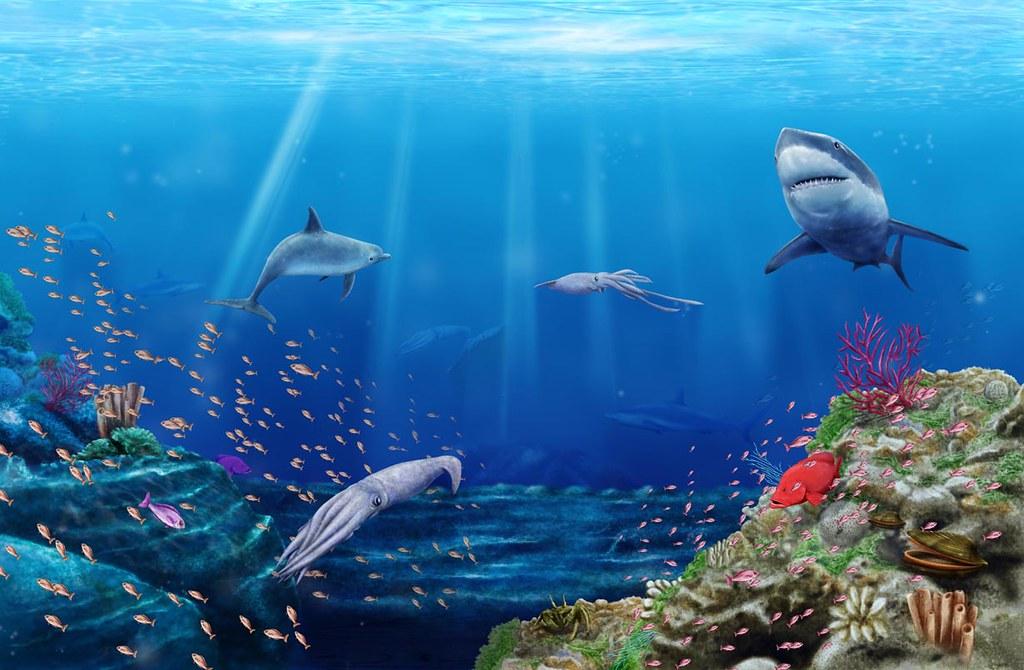 Fondo marino ilustracion digital jhon jairo barinas ortegon flickr - Fotos fondo del mar ...
