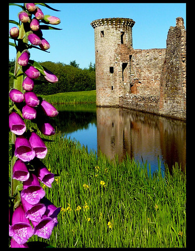 Caerlaverock Castle, flowers for m'lady  - EXPLORE | by Sheerlight