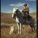 Depression Horse, Cowboy and dog