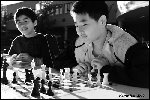 Flickr is a Game! - Chess Playing Minoru Library N2089e | by Harris Hui (in search of light)