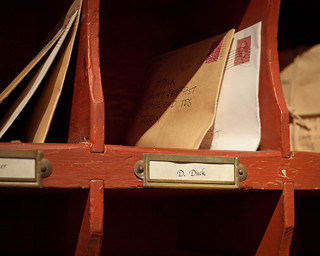 D. Duck PO Box | by Peter E. Lee