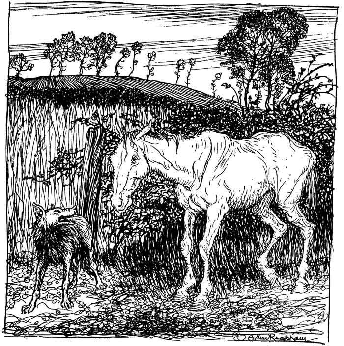 Lupus, Equus et Hordeum