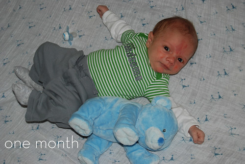 Eli 1 month | by I Should Be Folding Laundry