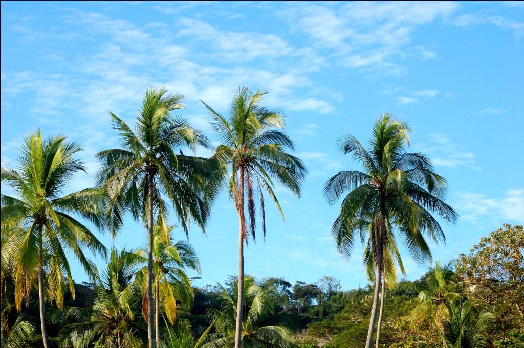 Beach Costa Rica Best