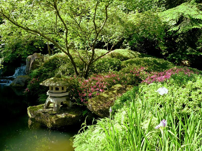 Jardin japonais le tr s beau jardin japonais de portland for Le jardin 3d