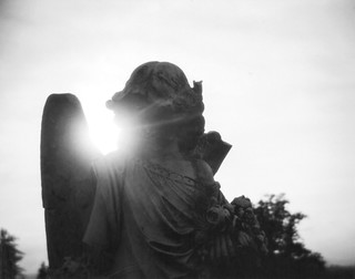 Holga Angel | by thewaltonsare