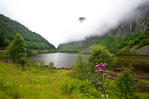 Summer in Norway: Wet and foggy | by jensvins