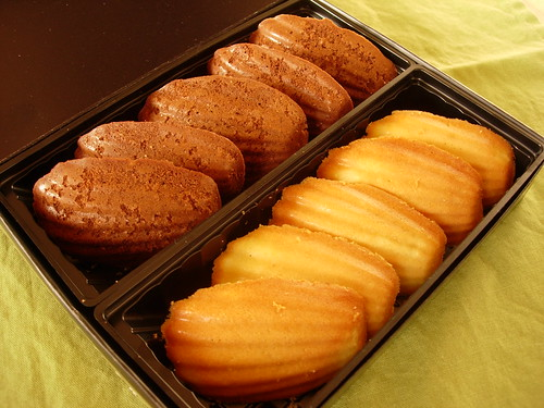 homemade chocolate Madeleine cookies, #2 | by ixfd64