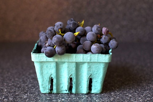 concord grapes | by smitten kitchen