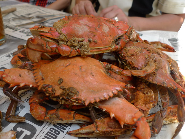 Steamed Blue Crabs | Flickr - Photo Sharing!
