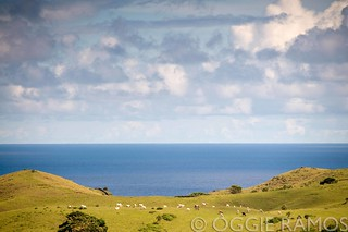 Batanes Itbayat Fluffy Clouds Blue Sea Green Hills Grazing Cows | by lagal[og]