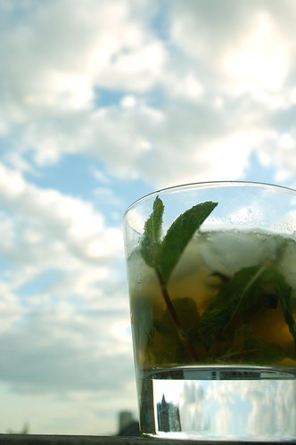 Mint Julep | by felix_cohen