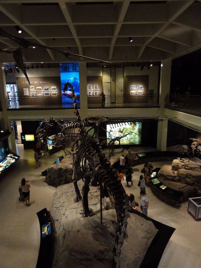 Natural Museum Of Science Houston Jobs