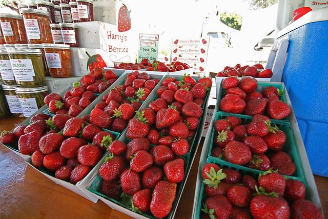 Santa Monica Farmers Market (Sunday) | Flickr - Photo Sharing!