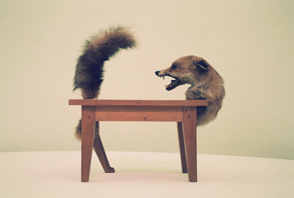 Victor brauner loup table wolf table wood and taxiderm flickr - Victor brauner loup table ...