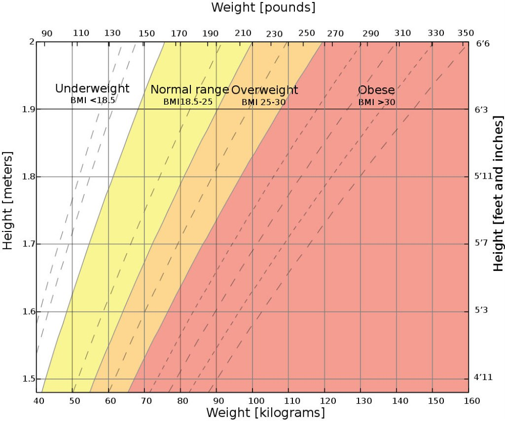 Medication Chart Template: Body mass index chart | Body mass index (BMI) chart | Flickr,Chart