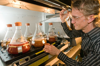 Biofuels work at Argonne | by Argonne National Laboratory