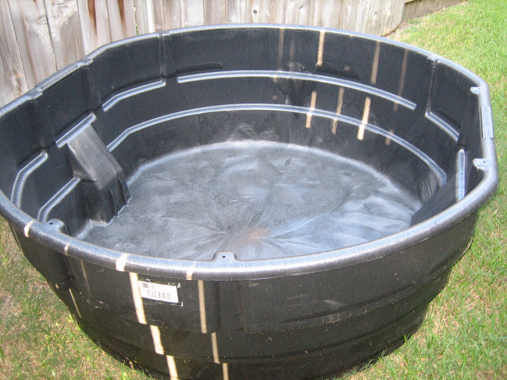 Rubbermaid 300 gallon pond 1 my next great project i 39 m for Koi pond tubs