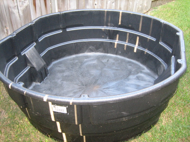 Rubbermaid 300 Gallon Pond 1 My Next Great Project I M