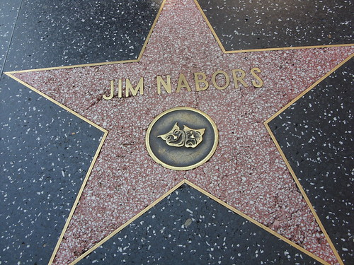 Damaged star of Jim Nabors on the Hollywood Walk of Fame | by jeff_soffer