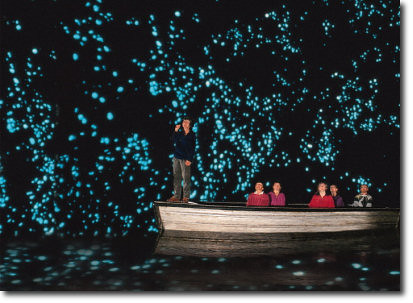 Glow Worm Tours Providenciales