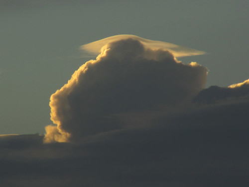 Pileus | by Flying Jenny