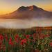 Mt.St.Helens Sunrise