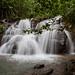 Water fall at Sierra Llorona, a Bd monitoring site in central Panama.