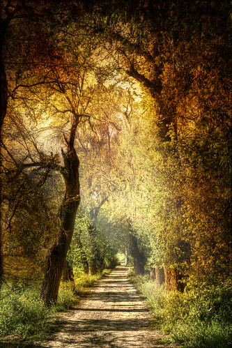 Mystic path. Sendero mistico. | by Zu Sanchez